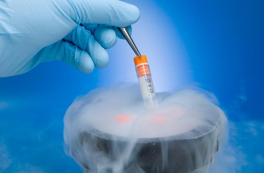 Криохранение спермы, яйцелеток , эмбрионов в Челябинске. Криобанк. Стоимость хранения биоматериалов.